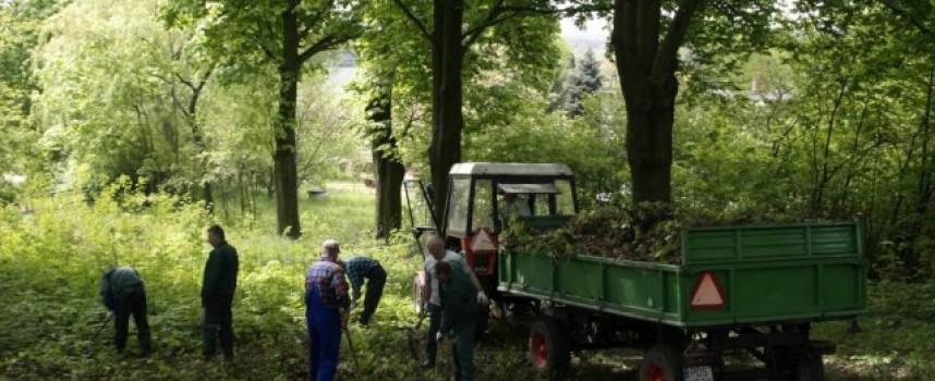 Wyszli z aresztu – posprzątali park