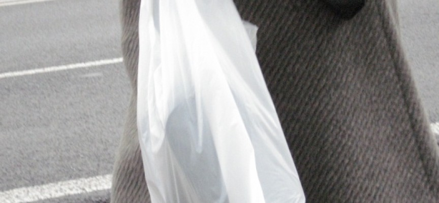 Kiedy zrezygnujemy z foliówek na rzecz toreb z płótna?