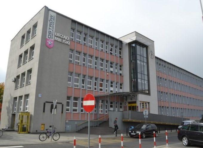 Urząd Miejski szuka inspektora – oferta pracy