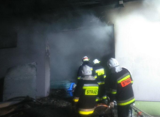 Pożar fermy norek