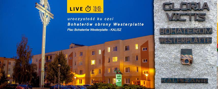 Dobrzec_live