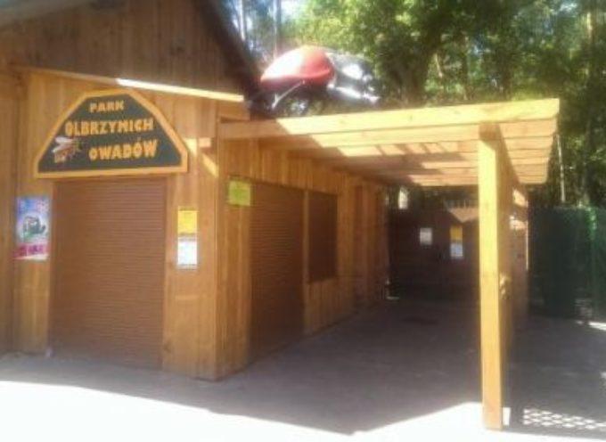Sonoga, ważka i biedronka w Parku Olbrzymich Owadów