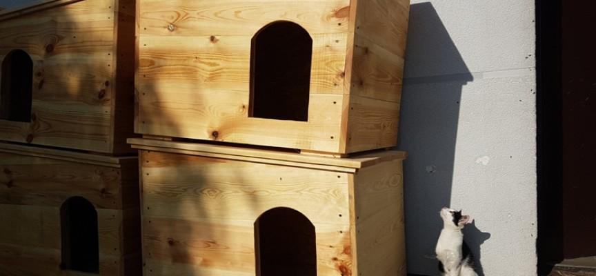 12 nowych i ciepłych bud dla psiaków ze schroniska