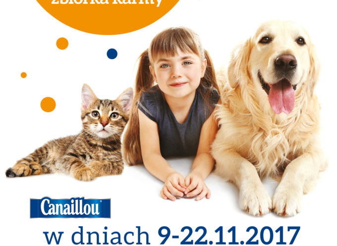 Intermarche pomaga wspierać bezdomne zwierzęta