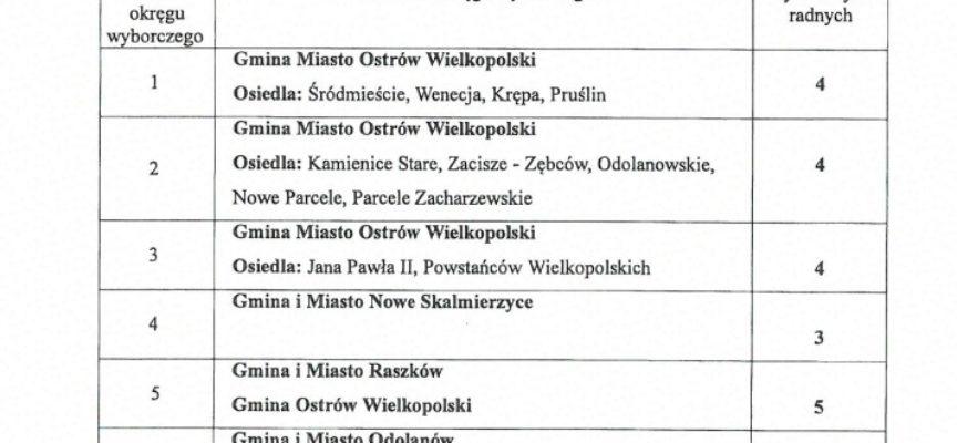 Skalmierzyce same, Sieroszewice w dużym okręgu wyborczym