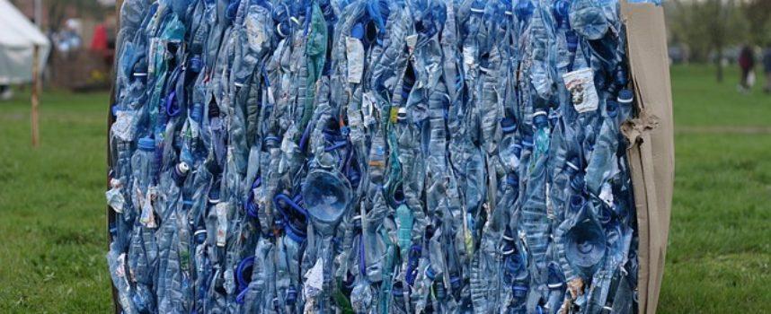 Drzewka za butelki a kwiaty za elektro – odpady