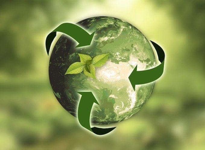 Co i jak robić z odpadami – interesujący przewodnik
