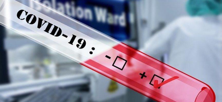 11 nowych zakażeń w Wielkopolsce, cztery w regionie