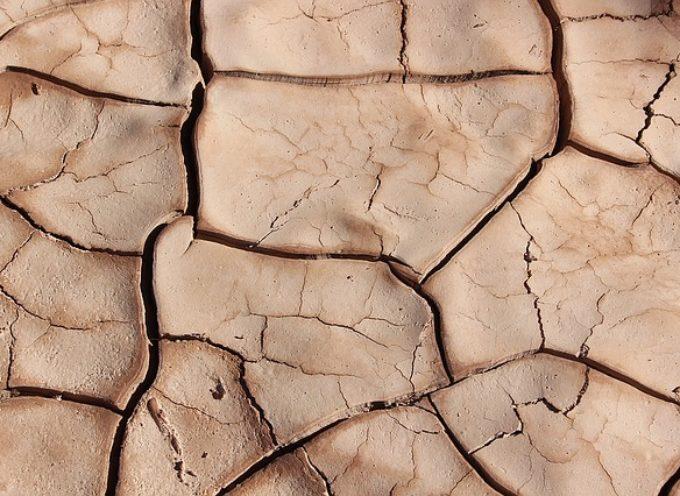 Czeka nas największa od lat susza. Czy plan Paducha pomoże z nią walczyć?