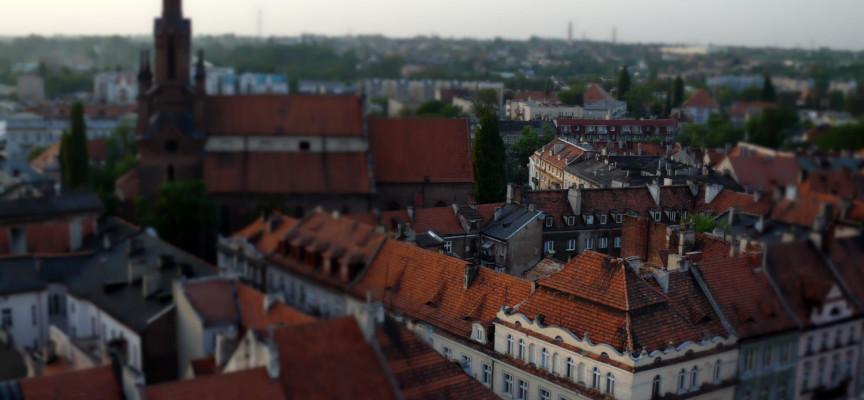 Kto prezesem MZBM w Kaliszu?