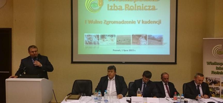 Piotr Walkowski ponownie prezesem WIR