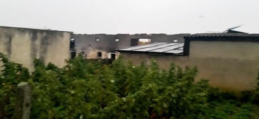 Krajobraz po burzy – połamane drzewa w Chojniku