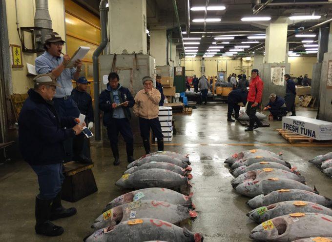 Kaliszanie na dorocznej aukcji drogich tuńczyków