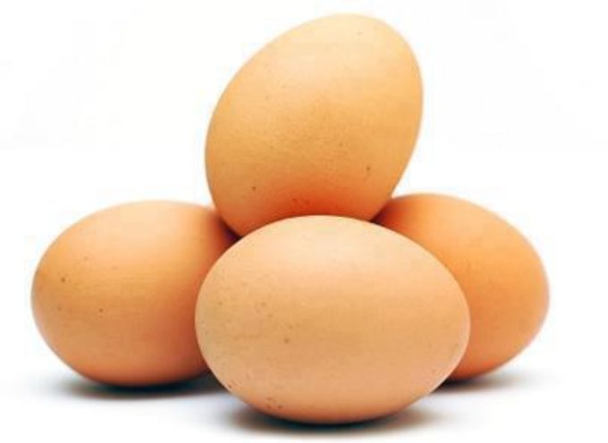 Jaja zakażone salmonellą w sklepach DINO