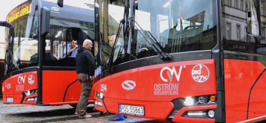 Autobusy na prąd, ale – póki co – normalny nie ten ekologiczny