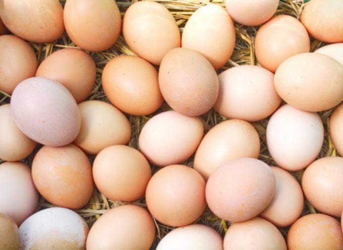 Colian rezygnuje z jaj z chowu klatkowego