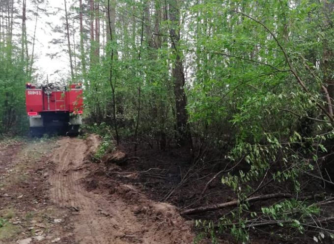 Trzy pożary lasów
