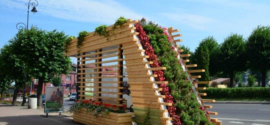 Czy w Ostrowie będą zielone przystanki?
