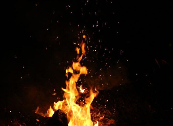 Płoną sadze w Jelitowie