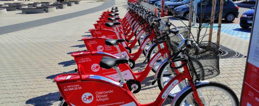 Wraca miejski rower w Ostrowie
