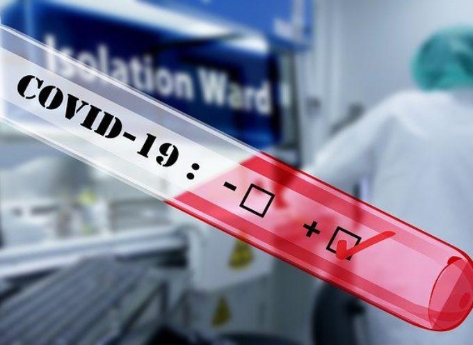W Wielkopolsce 15 nowych zachorowań