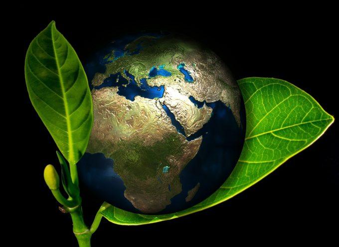 Ciemna strona Black Friday. Jak kupować, by nie zalewać środowiska odpadami?