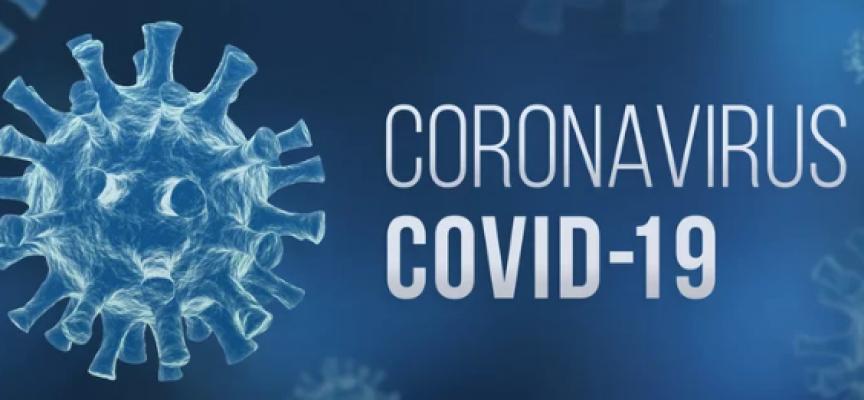 W Wielkopolsce zaledwie 204 nowe przypadki koronawirusa